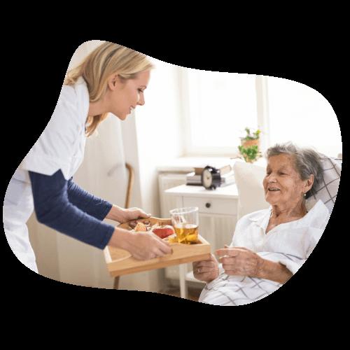 Services | Companion Care, Home Care Toledo